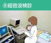 ⑧超音波検診
